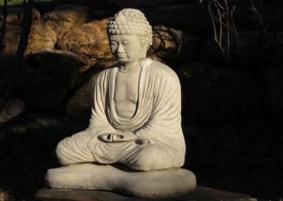 Buddha statue in light of dawn.