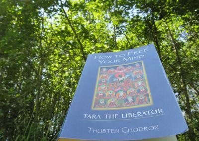 """Book """"How to Free Your Mind: Tara the Liberator"""" by Thubten Chodron."""