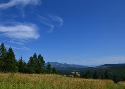 Clear blue sky.