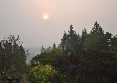 Smoke blocks sun.