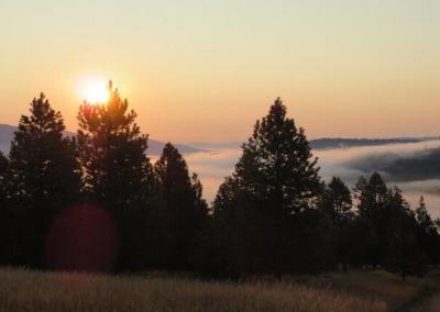 Early morning sunrise!