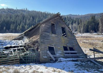 Collapsed wooden farmhouse in field