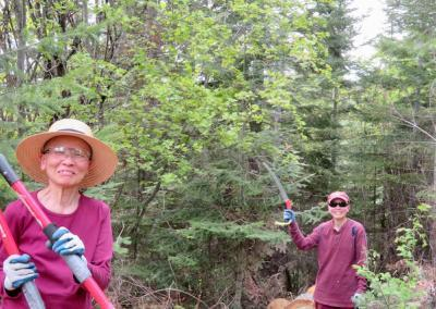 Nuns work in forest.