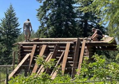 Men take apart cabin roof.