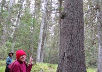 Nun looks at tree.