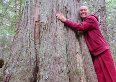 Nun hugs tree.